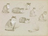 Elizabeth Nourse (American, 1859–1938), Sketches of a Cat, circa 1889, graphite pencil and white chalk on paper, from Sketchbook 7, Gift of the Mercantile Library, Cincinnati, through the generosity of the Niehoff Family